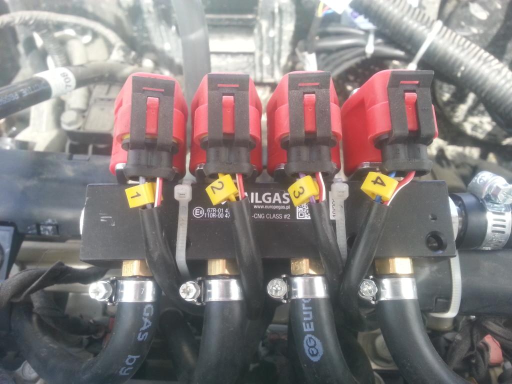 Форсунки газовые RailGas